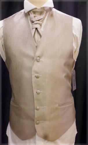 Ensemble gilet,cravalière et pochette 2304-04 beige