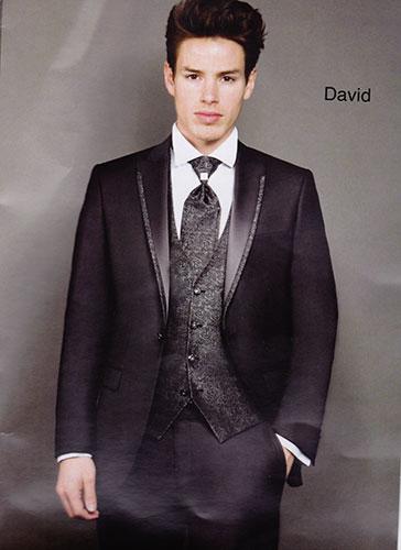 David gris 5 pièces